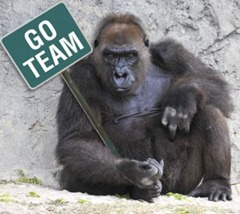 1213571_gorilla_marketing